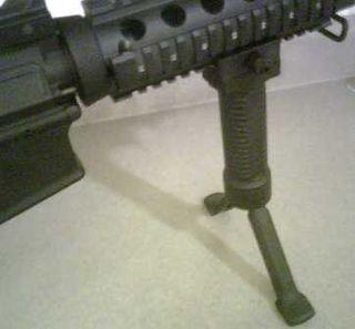 AR with bipod